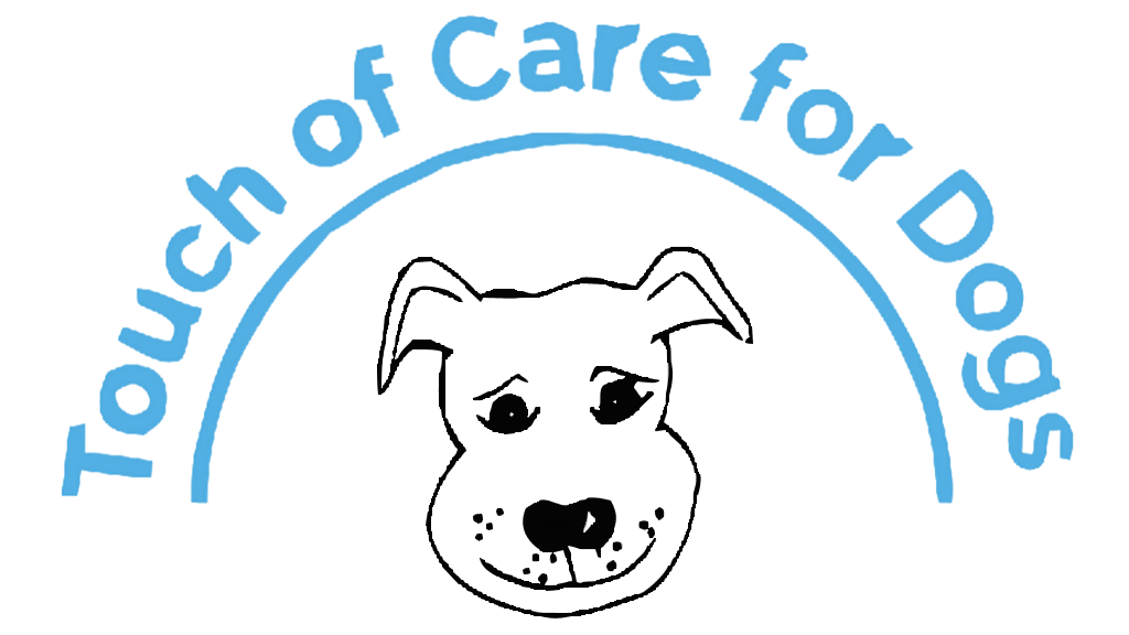 Tellington TTouch Training®  in Hereford | Touch of Care for Dogs